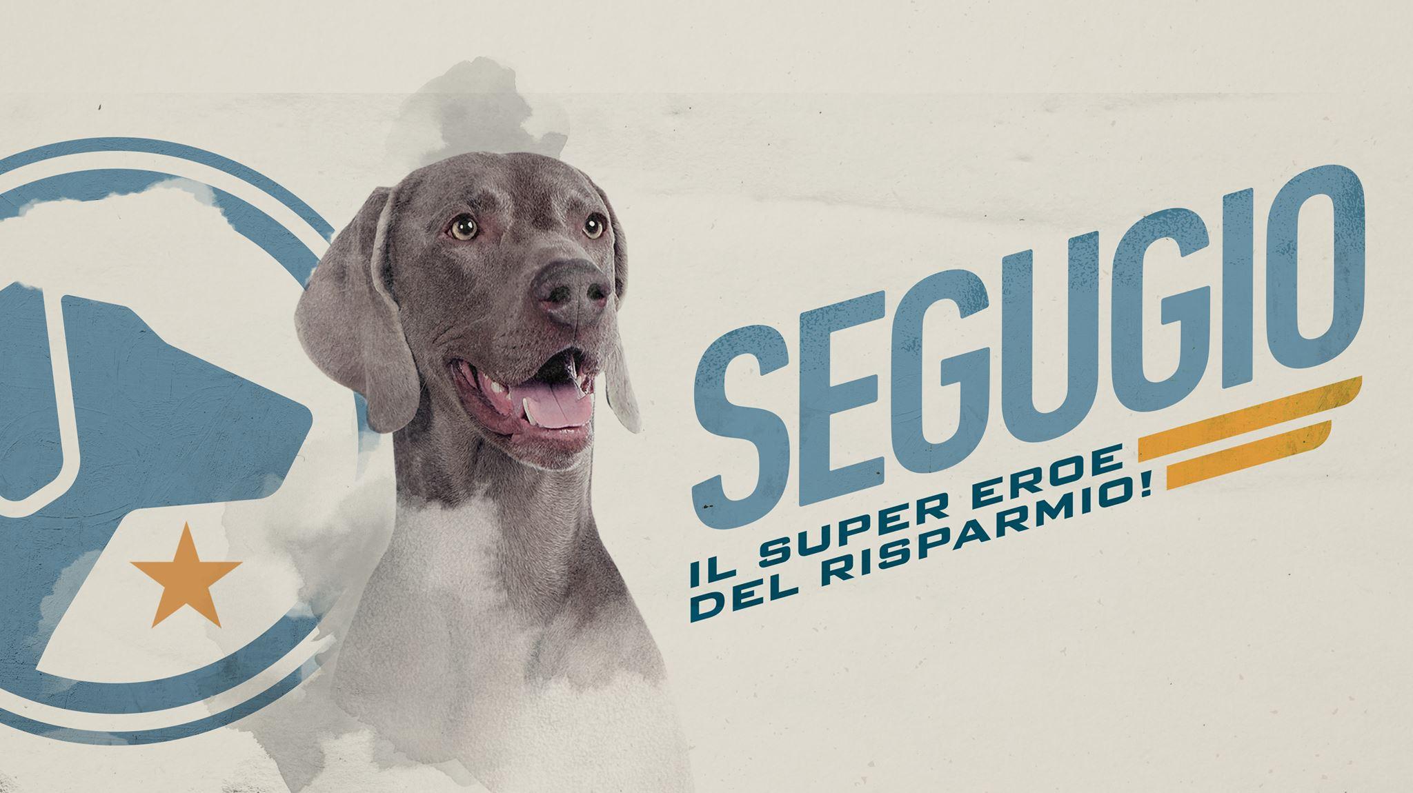 Asso, il cane di Segugio.it