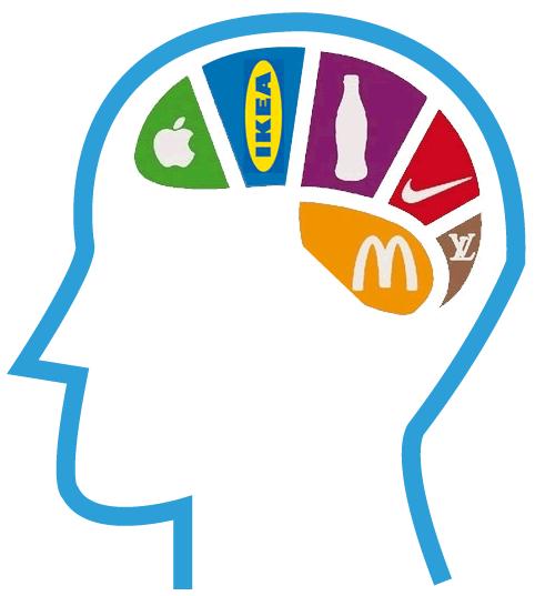 Brain positioning
